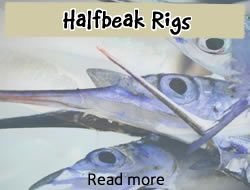 batackle-halfbeak rigs