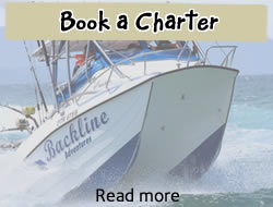 Book a charter from Backline Adventures